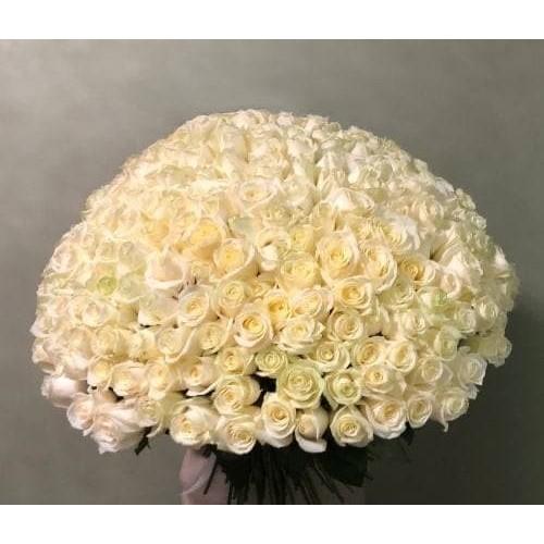 Купить на заказ 201 роза с доставкой в Шу